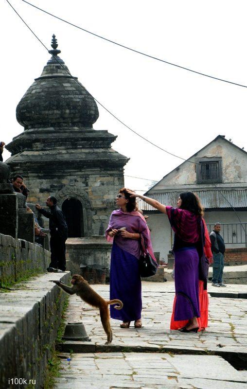 Женский тур в Непал Поступь Богини